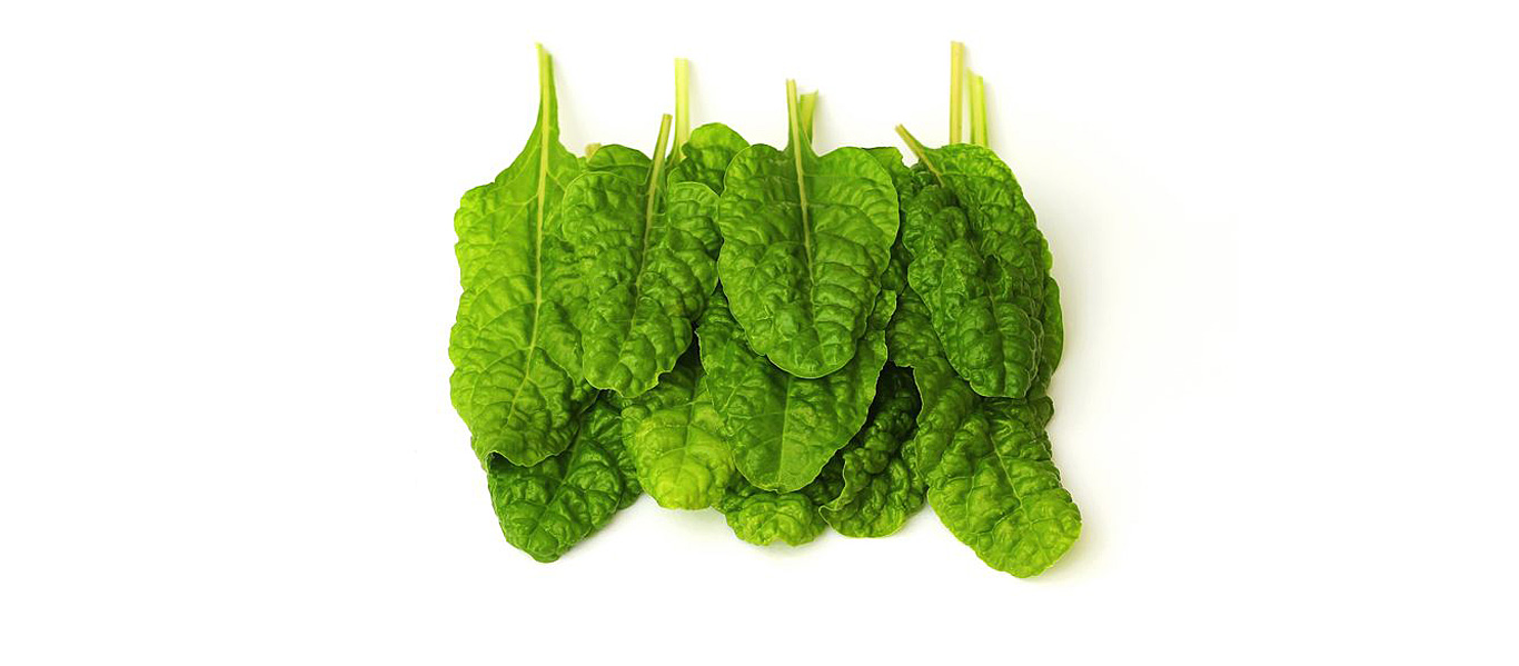 spinach_is_awesome